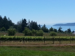 Saturna Vineyards, Saturna Island, BC