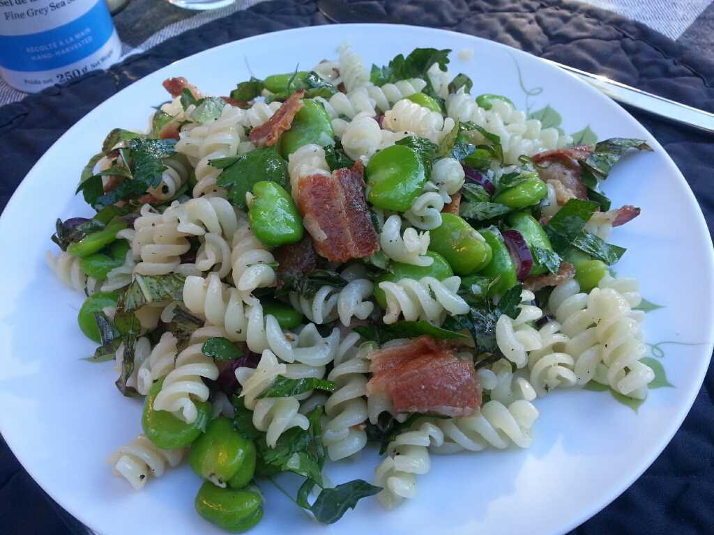Fresh herbs and fava beans on quinoa pasta.  Sorry Errazuriz, dinner was excellent, the wine so-so.