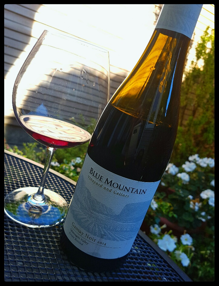 Blue Mountain Gamay Noir, 2014